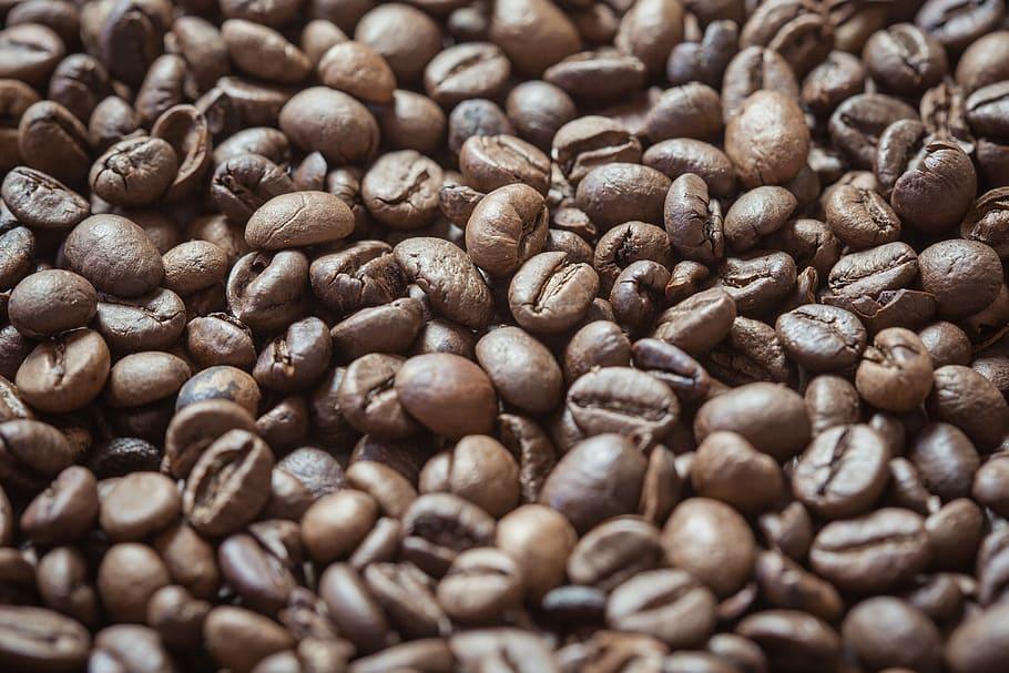 Xico Coffee